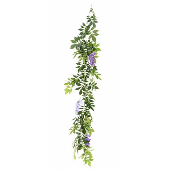 Glycine artificielle guirlande