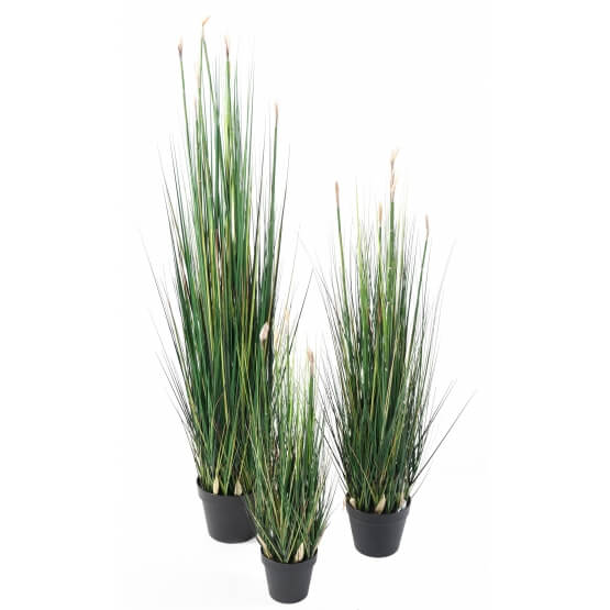 Presles Grass artificielles