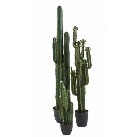 Cactus artificiel Finger - 75 cm - 150 cm et 185 cm
