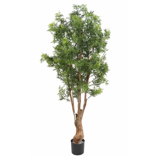 Aralia artificiel Ming Nitida TN UV