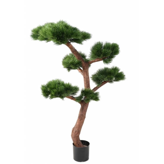 Pin Bonsai UV résistant