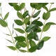 Eucalptus artificiel en tige