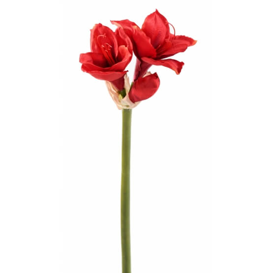 Tiges Amaryllis artificielles