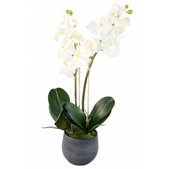 Orchidée artificielle Phalaénopsis en pot déco