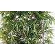 Haie de Bambous artificiels