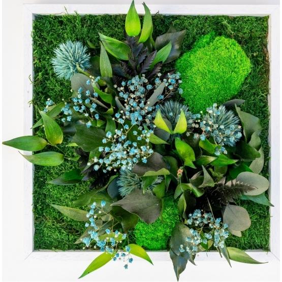 Tableaux Végétaux Stabilisés colorés