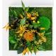 Tableaux Végétaux Stabilisés