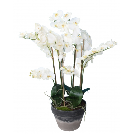 Orchidée artificielle Phalaénopsis 105 cm