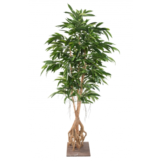 Ficus artificiel Root Longifolia