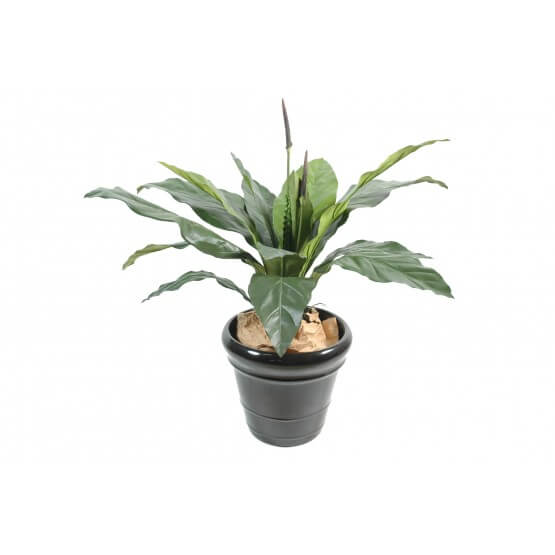 Anthurium artificiel jungle king 80 cm