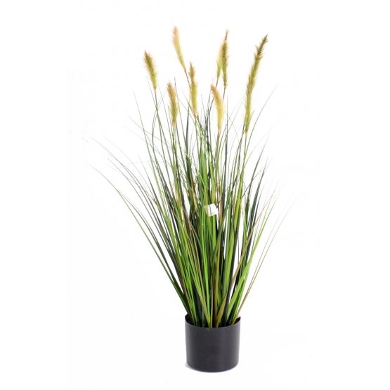 Foxtail artificiel GF