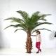 Palmier artificiel CANARIE