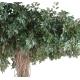 Ficus artificiel liane Umbrella