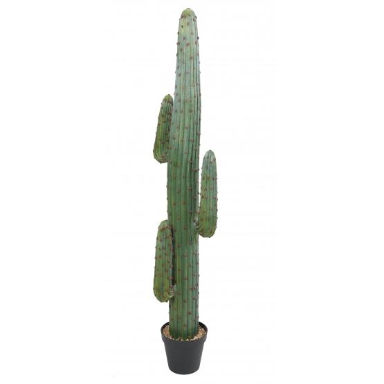 Cactus Artificiel Mexico GR