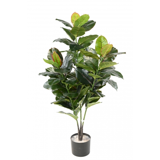 Ficus artificiel (Rubber tree)