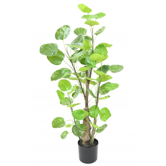 Aralia artificiel Fabian