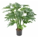 Phillodendron artificiel SELLOUM 63 CM