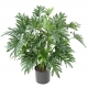 Phillodendron artificiel SELLOUM 75 CM