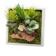 Tableau vegetal stabilise Mono - Bois flotté