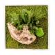 Tableau végétal stabilise NATURE CARRE