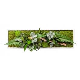 Tableau végétal stabilise NATURE PANO