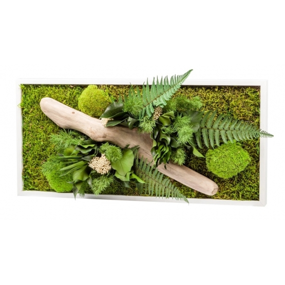 Tableau végétal stabilisé NATURE RECTANGLE