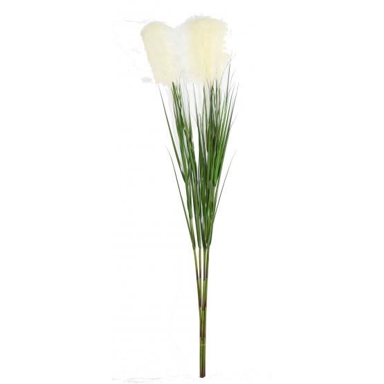 Graminée artificielle Carex Vulpina (fleur de la Pampa)