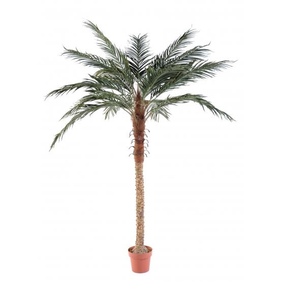 Palmier Phoenix artificiel