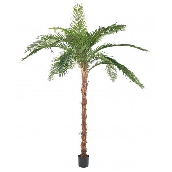 Palmier Phoenix Canariensis artificiel