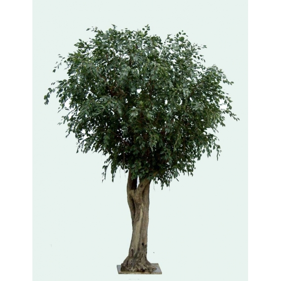 Ficus artificiel Tree géant