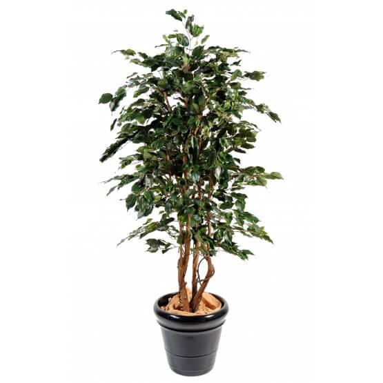 Ficus artificiel exotica 180 cm