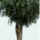 Ficus artificiel Tree géant