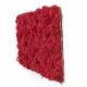 Tableau Lichen Stabilisé Rouge