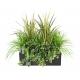 Jardinière plantes artificielles Gris
