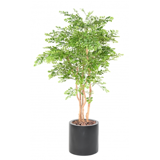 Acacia artificiel plus son pot rond