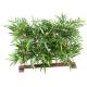 Haie de Bambous artificielle anti UV 90 CM
