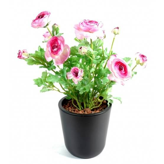 Renoncules artificielles rose