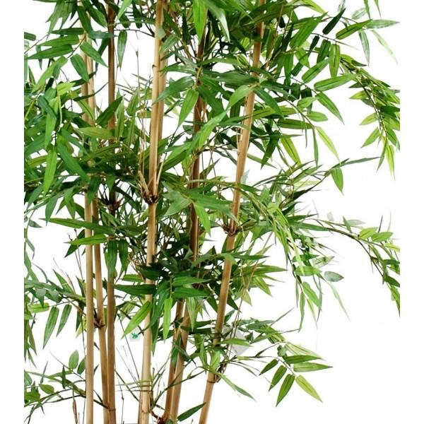 Bambou artificiel oriental multitroncs 68 00 for Bambou artificiel