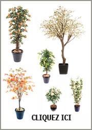 Plante artificielle ext rieur int rieur et fleurs for Fleurs et plantes artificielles haut de gamme