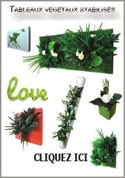 Décorez vos intérieurs avec des tableaux vegetaux stabilises- plante naturelle sans entretien